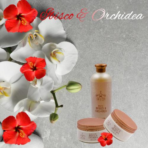 Ibisco & Orchidea